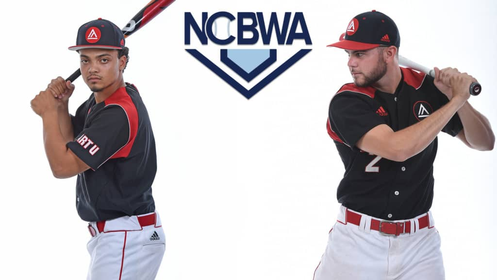 Art U Baseball for NCBWA