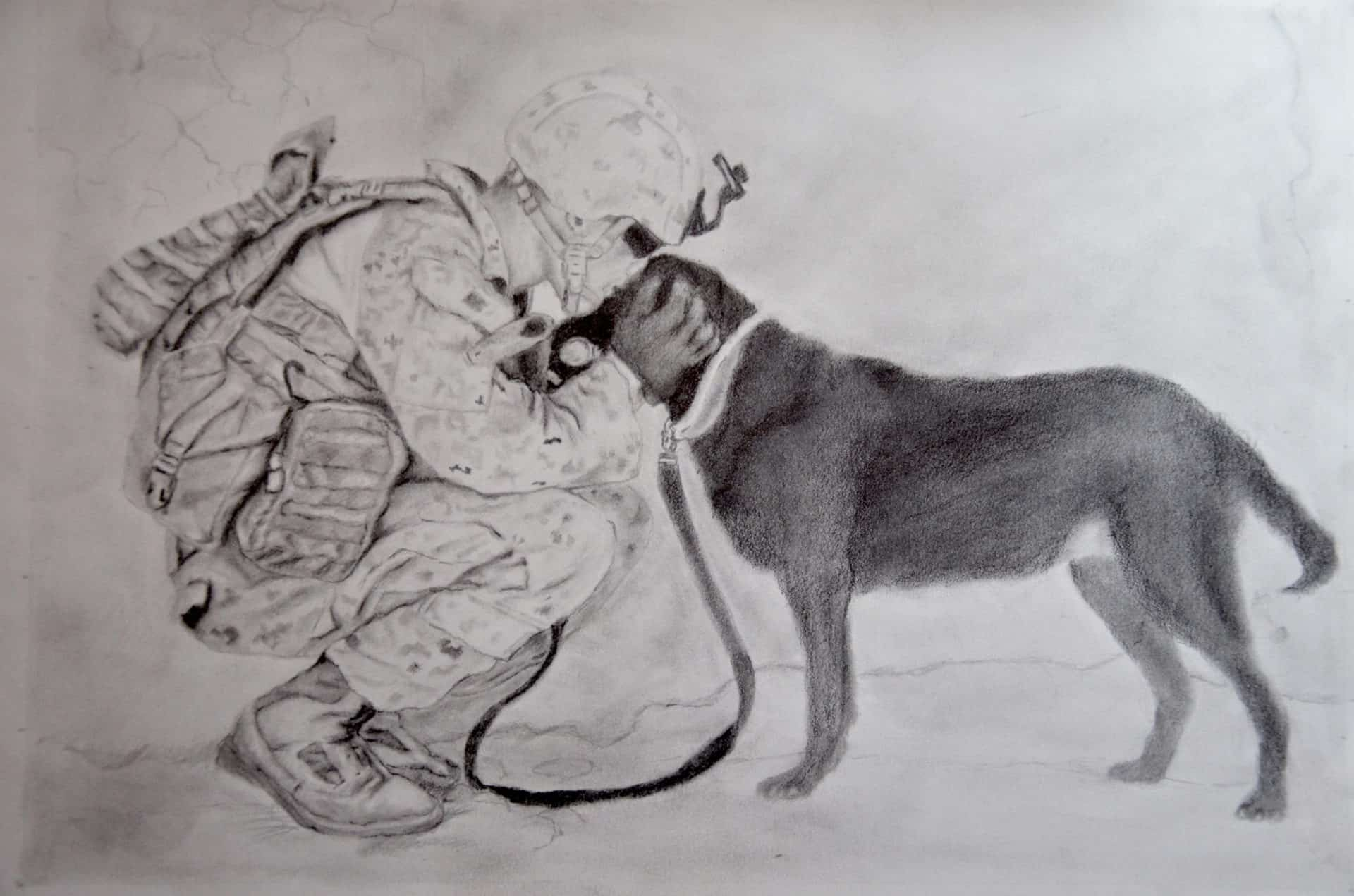 Tim Andrews Illustration Love in War