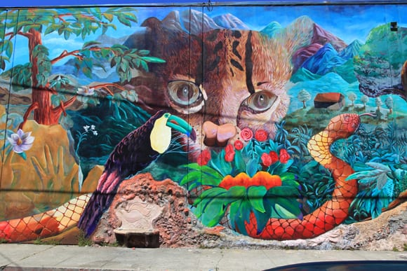 Urban Jungle Finished Mural